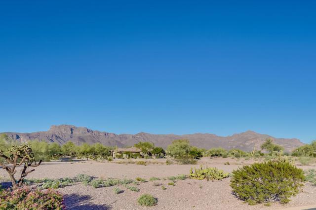 3873 S Gambel Quail Way, Gold Canyon, AZ 85118 (MLS #5842806) :: The Kenny Klaus Team
