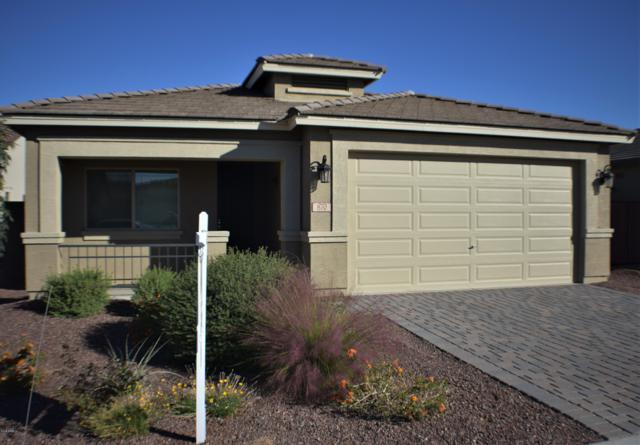 870 W Leadwood Avenue, Queen Creek, AZ 85140 (MLS #5842817) :: Conway Real Estate