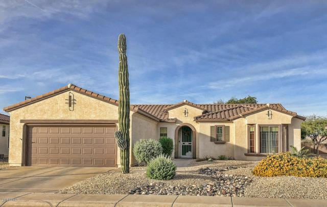 19236 N Tallowood Way, Surprise, AZ 85387 (MLS #5842827) :: RE/MAX Excalibur