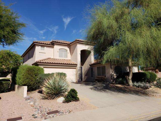 6224 E Riverdale Street, Mesa, AZ 85215 (MLS #5842941) :: CC & Co. Real Estate Team