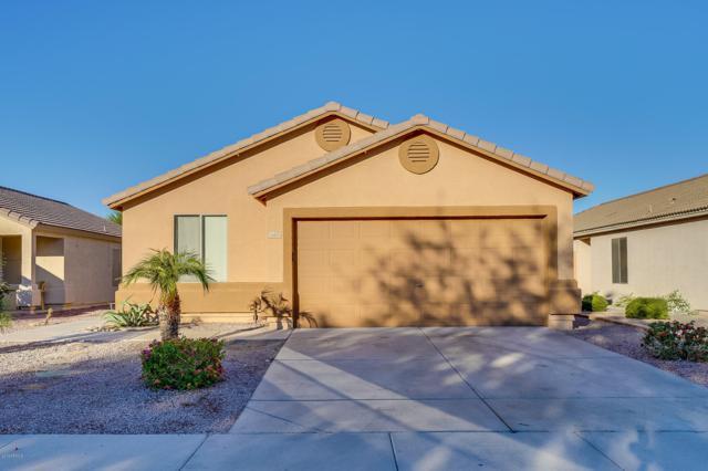 16426 N 113TH Drive, Surprise, AZ 85378 (MLS #5843014) :: The Garcia Group