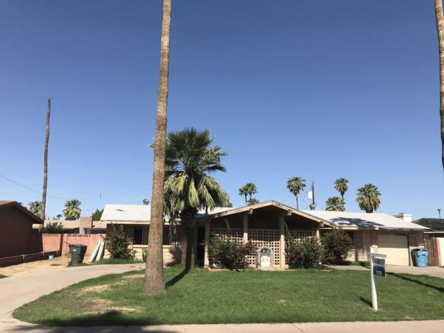 6240 W Highland Avenue, Phoenix, AZ 85033 (MLS #5843087) :: Yost Realty Group at RE/MAX Casa Grande