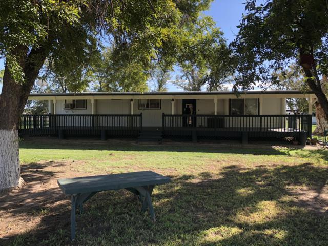 145 W Marilyn Way, San Tan Valley, AZ 85140 (MLS #5843131) :: Occasio Realty
