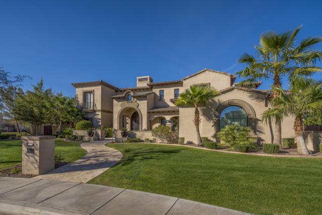 640 W Sunshine Place, Chandler, AZ 85248 (MLS #5843141) :: Relevate   Phoenix