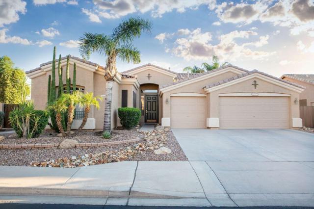 9941 E Lobo Avenue, Mesa, AZ 85209 (MLS #5843169) :: The Kenny Klaus Team