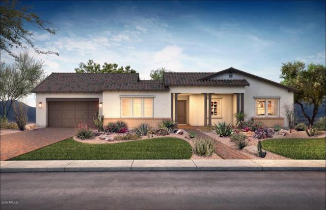 21027 E Cattle Drive, Queen Creek, AZ 85142 (MLS #5843193) :: Arizona 1 Real Estate Team