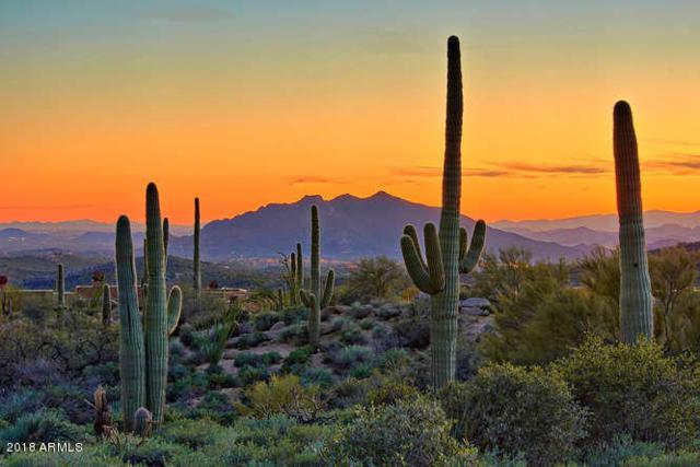 41796 N 99TH Way, Scottsdale, AZ 85262 (MLS #5843206) :: The W Group