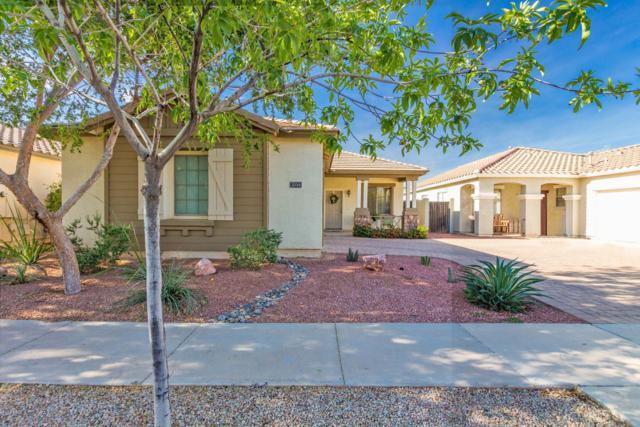 2034 S Falcon Drive, Gilbert, AZ 85295 (MLS #5843244) :: The Garcia Group