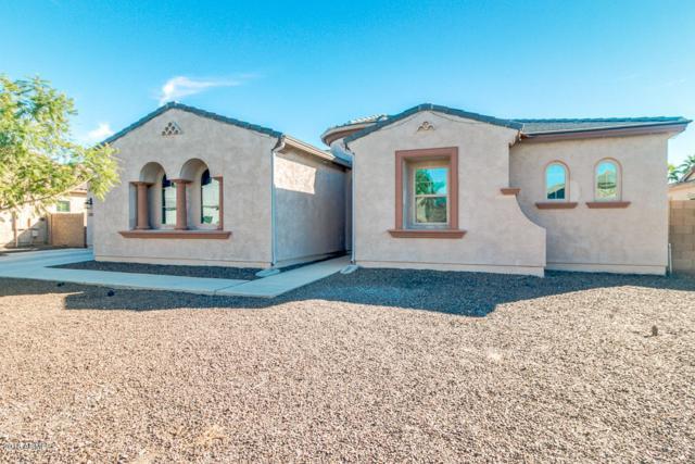 2997 E Wildhorse Drive, Gilbert, AZ 85297 (MLS #5843273) :: Yost Realty Group at RE/MAX Casa Grande