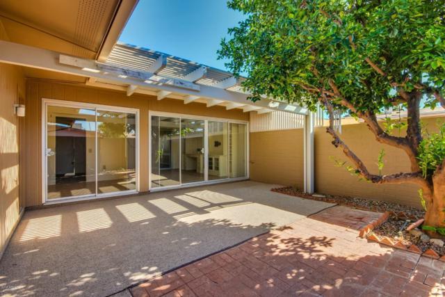 9946 W Palmeras Drive, Sun City, AZ 85373 (MLS #5843288) :: Team Wilson Real Estate