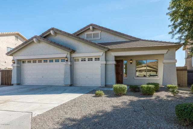 793 E Harold Drive, San Tan Valley, AZ 85140 (MLS #5843322) :: Yost Realty Group at RE/MAX Casa Grande