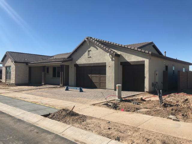 19506 S 210TH Place, Queen Creek, AZ 85142 (MLS #5843341) :: Arizona 1 Real Estate Team