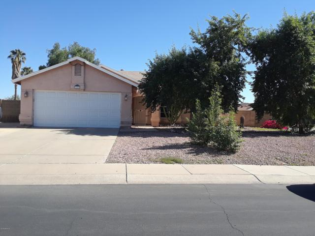 11425 N 93RD Avenue, Peoria, AZ 85345 (MLS #5843389) :: Riddle Realty