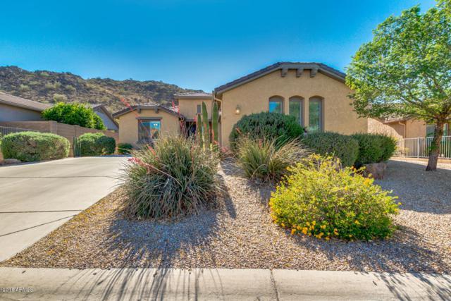 31916 N Larkspur Drive, San Tan Valley, AZ 85143 (MLS #5843451) :: The W Group