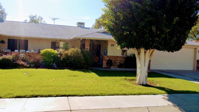 10410 W Saratoga Circle, Sun City, AZ 85351 (MLS #5843464) :: Riddle Realty