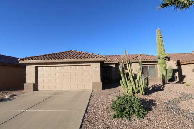 16324 W Desert Canyon Drive, Surprise, AZ 85374 (MLS #5843482) :: The Jesse Herfel Real Estate Group