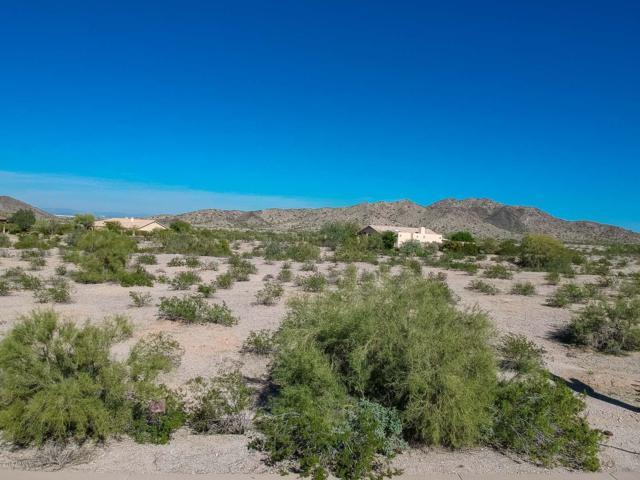 9365 S Krista Drive E, Goodyear, AZ 85338 (MLS #5843484) :: The Garcia Group