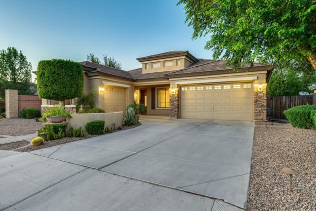 13518 W Earll Drive, Avondale, AZ 85392 (MLS #5843551) :: The Garcia Group