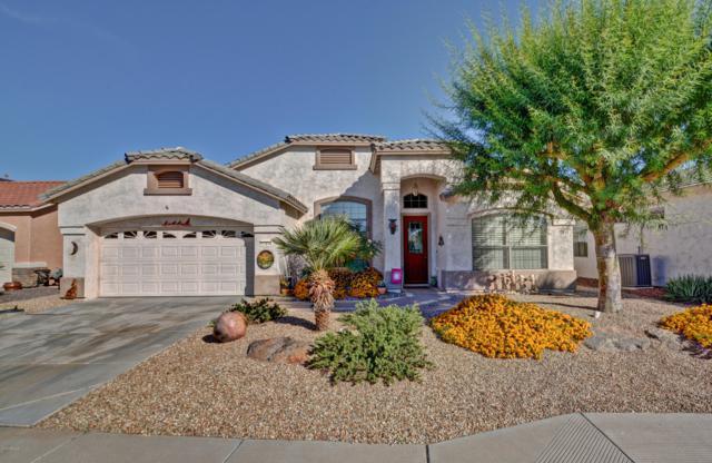 17974 W Camino Real Drive, Surprise, AZ 85374 (MLS #5843609) :: CC & Co. Real Estate Team