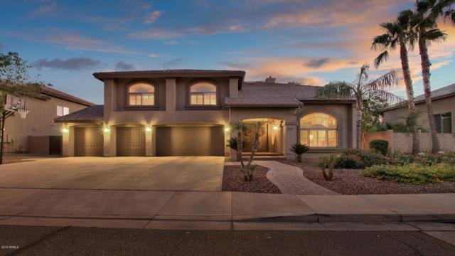 1349 E Canyon Way, Chandler, AZ 85249 (MLS #5843697) :: Yost Realty Group at RE/MAX Casa Grande