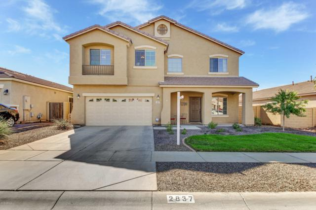 2837 E Baars Court, Gilbert, AZ 85297 (MLS #5843758) :: The W Group