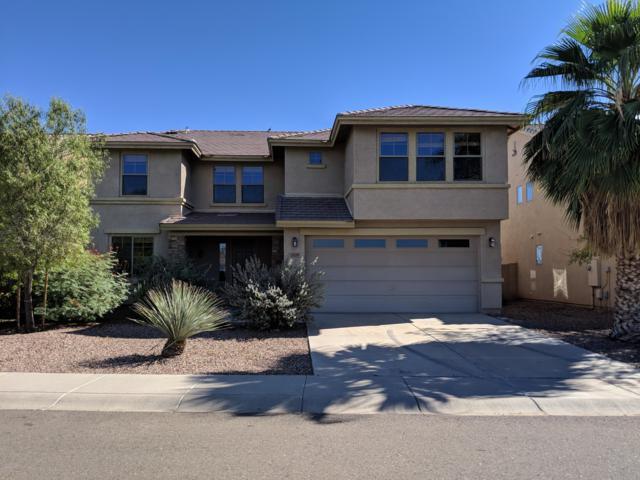 33159 N Slate Creek Drive, San Tan Valley, AZ 85143 (MLS #5843771) :: Arizona 1 Real Estate Team