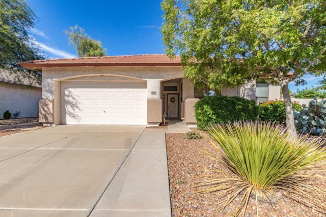 6510 W Matilda Lane, Glendale, AZ 85308 (MLS #5843817) :: The Garcia Group