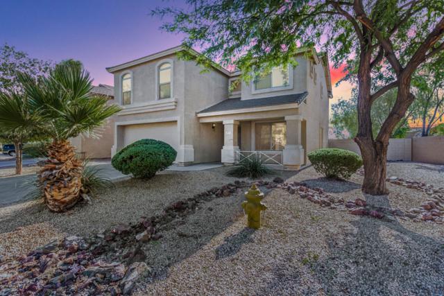 877 E Taylor Trail, San Tan Valley, AZ 85143 (MLS #5843907) :: Yost Realty Group at RE/MAX Casa Grande
