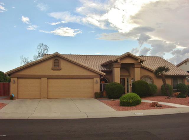 18834 N 89TH Lane, Peoria, AZ 85382 (MLS #5843919) :: Conway Real Estate