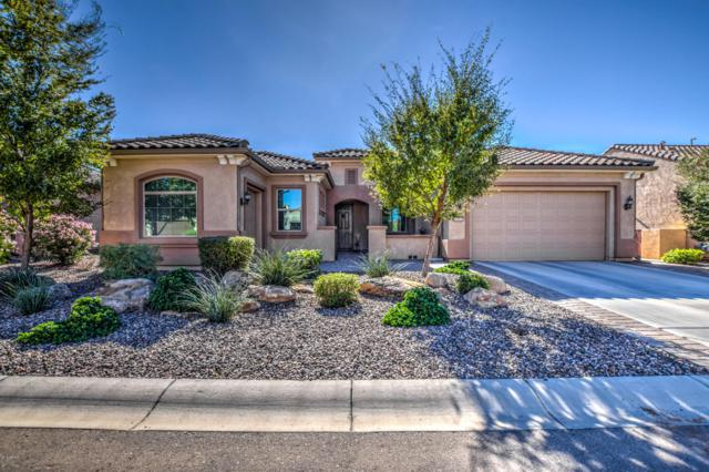 7155 W Merriweather Way, Florence, AZ 85132 (MLS #5843945) :: Riddle Realty