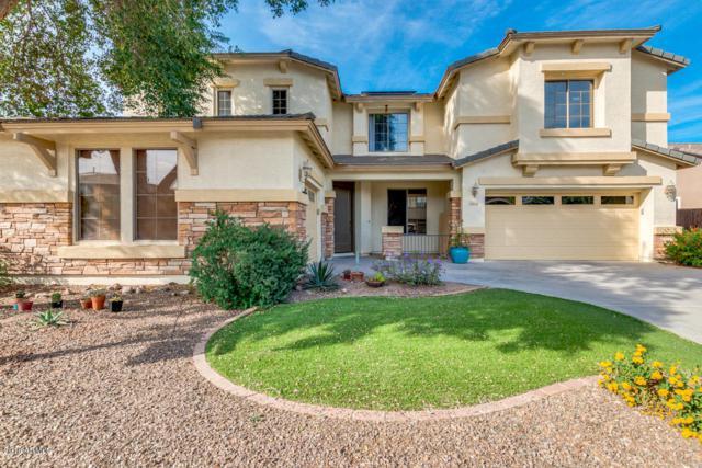 18510 E Oak Hill Lane, Queen Creek, AZ 85142 (MLS #5843962) :: The Property Partners at eXp Realty