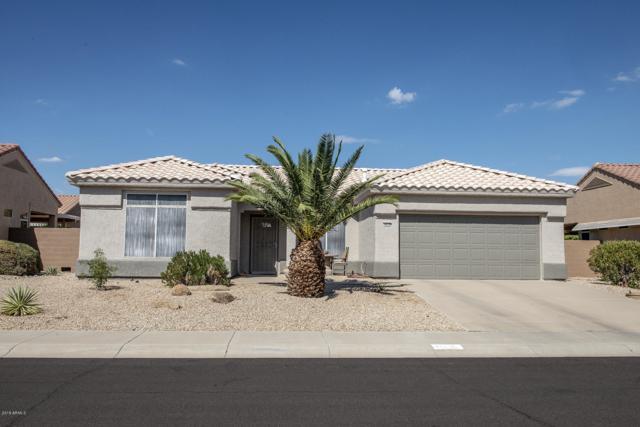 14210 W Territorial Lane, Sun City West, AZ 85375 (MLS #5844013) :: The Garcia Group