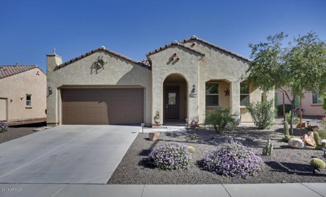 19471 N 270TH Lane, Buckeye, AZ 85396 (MLS #5844015) :: The Results Group