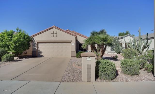 17210 N Firestone Lane, Surprise, AZ 85374 (MLS #5844043) :: The Jesse Herfel Real Estate Group