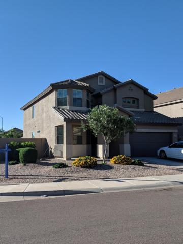 10261 W Robin Lane, Peoria, AZ 85383 (MLS #5844057) :: The Garcia Group