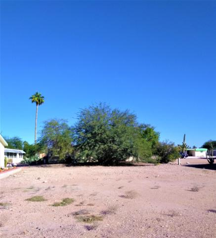 3715 N Montana Avenue, Florence, AZ 85132 (MLS #5844089) :: The Daniel Montez Real Estate Group