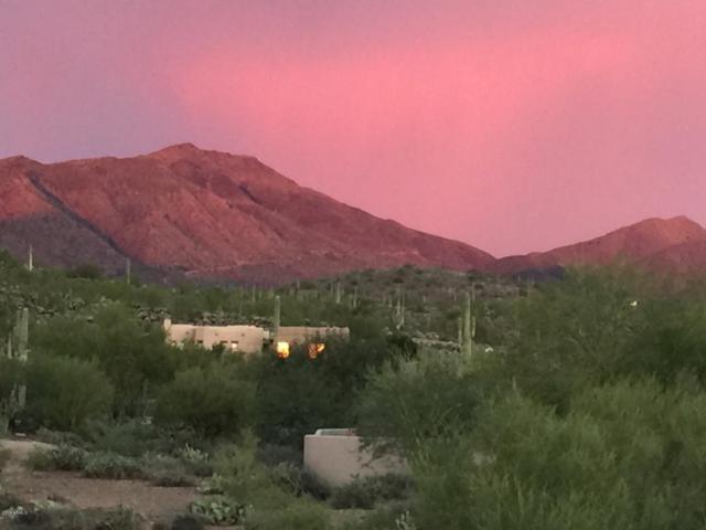 41809 N Spur Cross Road, Cave Creek, AZ 85331 (MLS #5844166) :: RE/MAX Excalibur