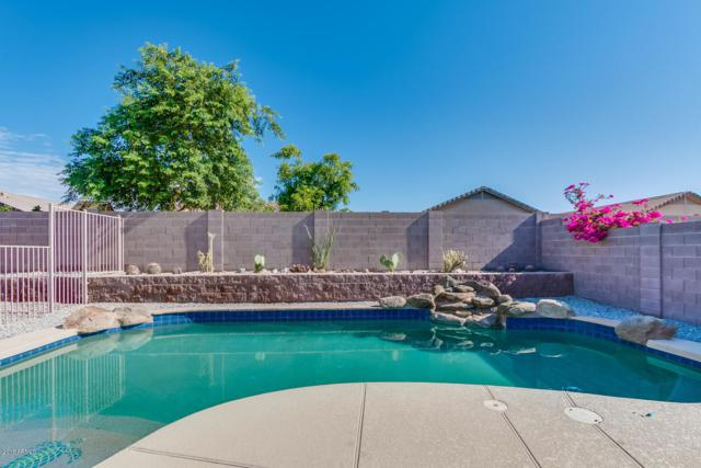 25712 W St Kateri Drive, Buckeye, AZ 85326 (MLS #5844196) :: The Daniel Montez Real Estate Group
