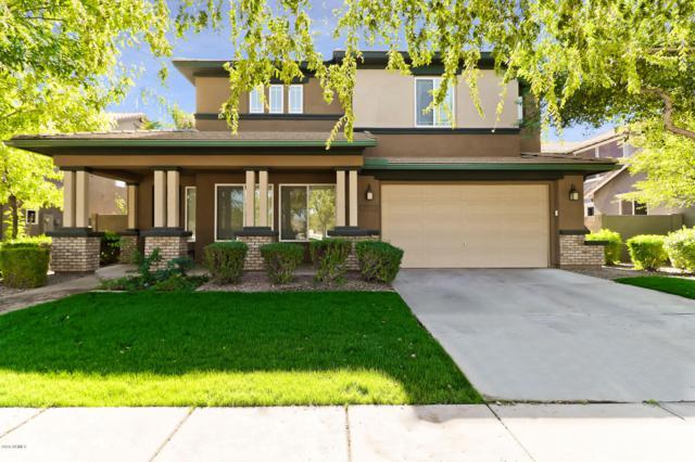 3551 E Weather Vane Road, Gilbert, AZ 85296 (MLS #5844209) :: Arizona Best Real Estate