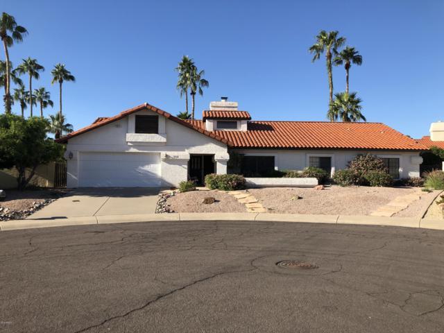 10556 E Bella Vista Drive, Scottsdale, AZ 85258 (MLS #5844225) :: RE/MAX Excalibur