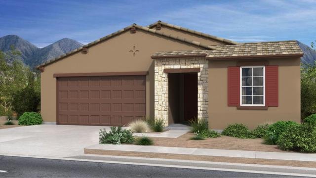 16177 W Canterbury Drive, Surprise, AZ 85379 (MLS #5844263) :: RE/MAX Excalibur