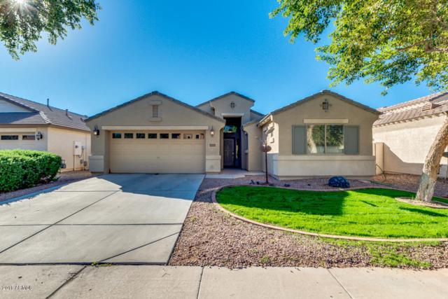 41251 W Hayden Drive, Maricopa, AZ 85138 (MLS #5844281) :: Scott Gaertner Group