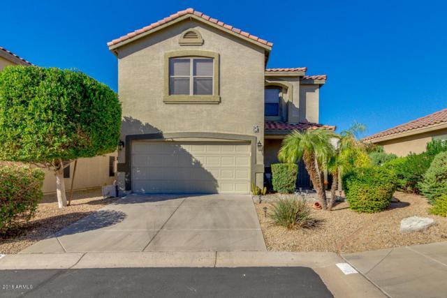 1710 W Amberwood Drive, Phoenix, AZ 85045 (MLS #5844289) :: Yost Realty Group at RE/MAX Casa Grande