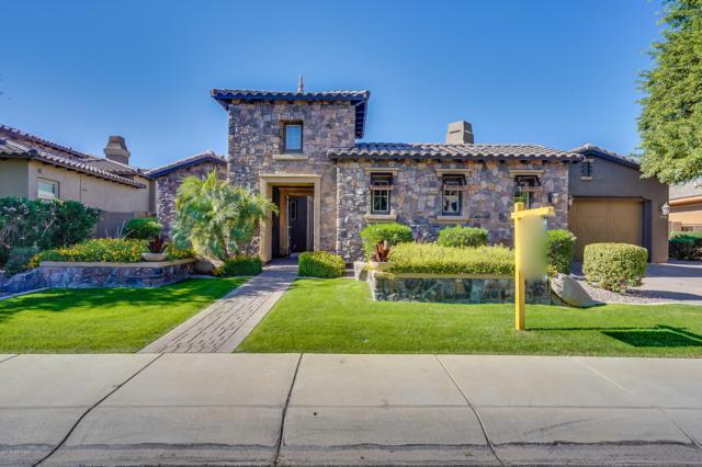 5216 S Fairchild Lane, Chandler, AZ 85249 (MLS #5844309) :: Team Wilson Real Estate