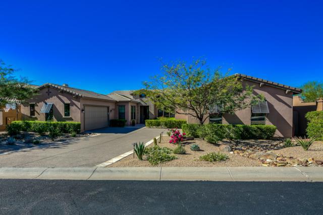 18236 N 99TH Street, Scottsdale, AZ 85255 (MLS #5844355) :: The W Group
