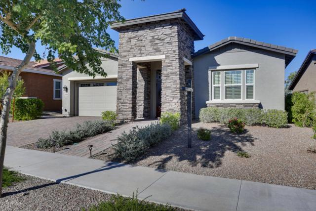 20854 W Hillcrest Boulevard, Buckeye, AZ 85396 (MLS #5844367) :: Team Wilson Real Estate