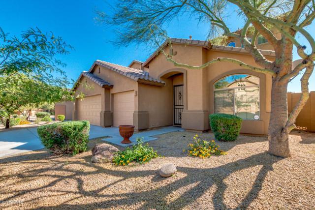 8363 W Molly Lane, Peoria, AZ 85383 (MLS #5844368) :: The Garcia Group