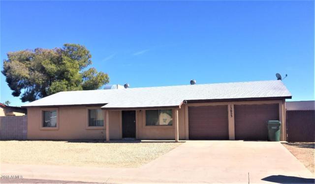 13053 N 42ND Street NE, Phoenix, AZ 85032 (MLS #5844404) :: Power Realty Group Model Home Center