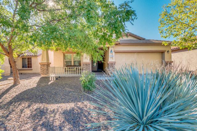 5303 W Hackamore Drive, Phoenix, AZ 85083 (MLS #5844419) :: The Laughton Team