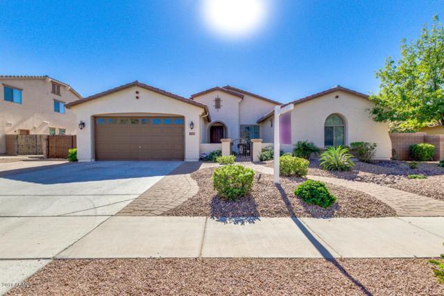 115 W Blue Ridge Way, Chandler, AZ 85248 (MLS #5844442) :: Relevate   Phoenix